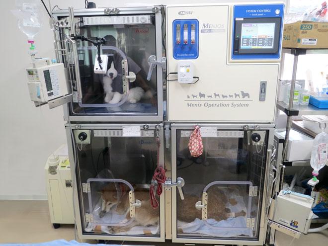 うの動物病院 高度管理医療器(監視機能付きICU装置)