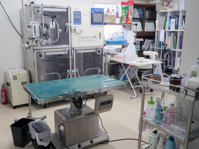 うの動物病院 第2処置室